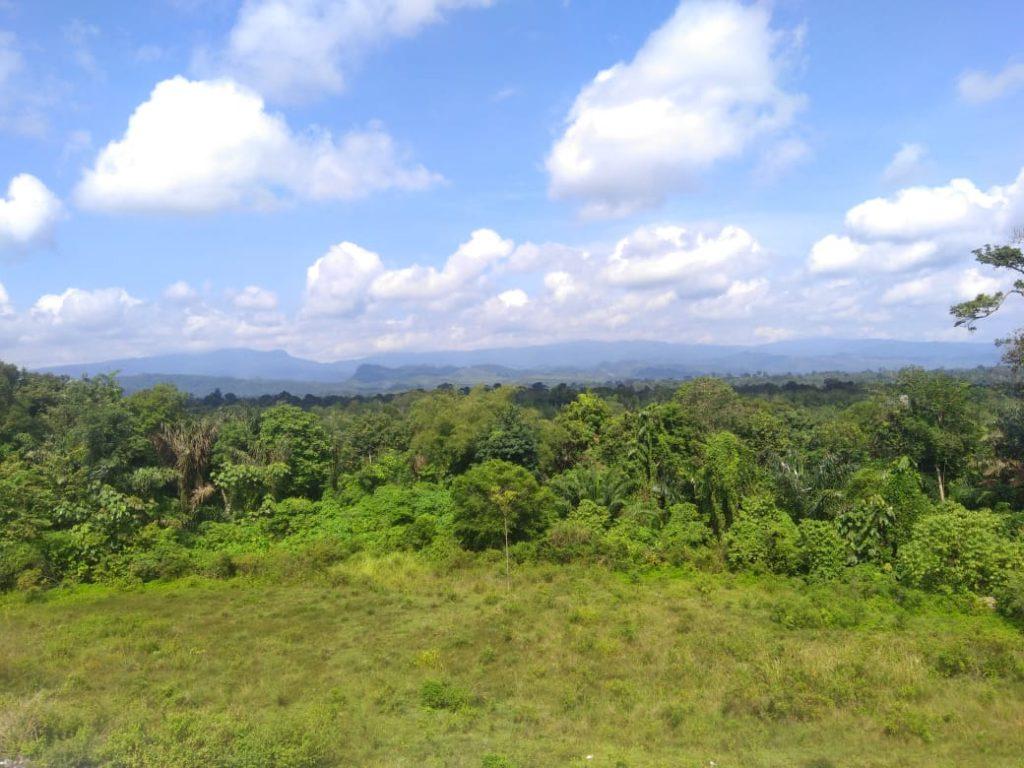 Memiliki View Indah, Tepi Jalan Diponegoro KM 2 di Serbu Instagramable