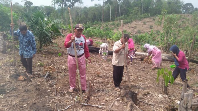Kades Sialang Jaya, Yuherman Daulay sedang menugal bersama masyarakat